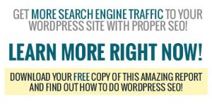 SEO WordPress Blogg
